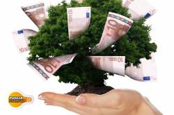 finanziamenti-diretti